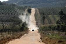 Ortswechsel: Die Verbindungsetappen führen über staubige Wege. © VW