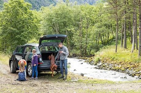 An den Fahreigenschaften des in dieser Motorisierung serienmäßig mit Allradantrieb ausgestatteten Kodiaq gibt es nichts zu kritisieren, auch nicht im Gelände. Foto: Skoda