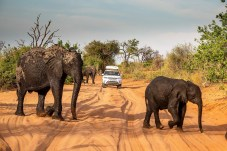 Die Huckelpiste nördlich der Fernstraße B8 endet an einem Kreuz sandiger Pfade. Die GPS-Daten sagen, dass hier irgendwo die Grenze zwischen Namibia und Angola verläuft. Foto: Auto-Medienportal.Net/Land Rover/Craig Pusey