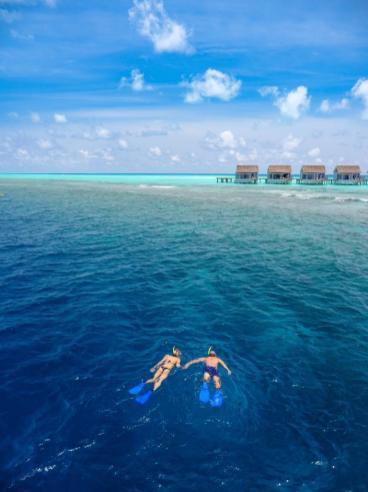 Schnorcheln, der beliebteste Zetvertreib auf der Insel. © Universal Resorts Maldives