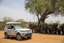 Vorfahrt für Land Rover - Elefanten müssen warten. © Land Rover