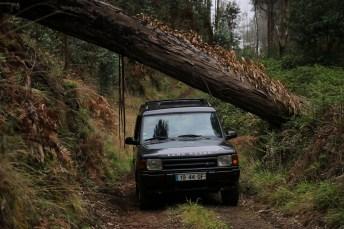 Die Fahrer des Unternehmens Adventurland zeigen den Besuchern auf Madeira die entlegensten und schönsten Perspektiven.