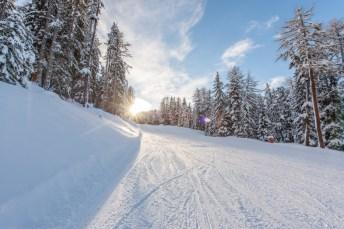 Schneesicher, vielseitig – und ohne lange Schlangen: Geheimtipp Skigebiet Schöneben-Haideralm Bildquelle: Schöneben-Haideralm