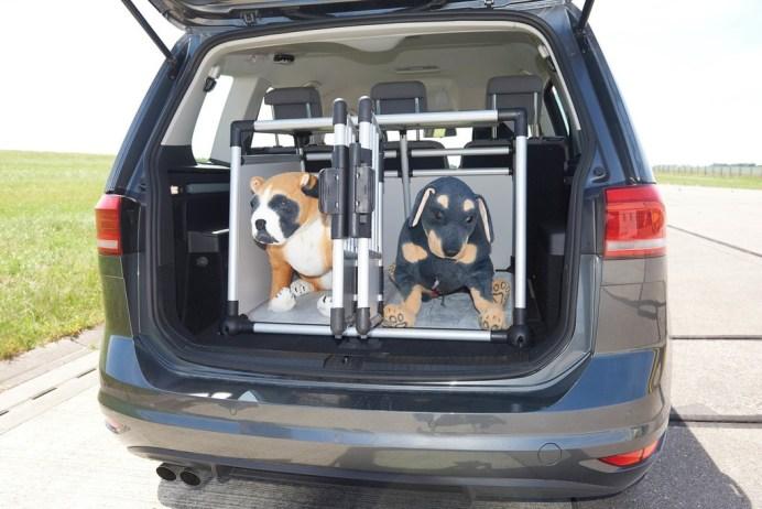 Hundetransport im Auto. Foto: ADAC