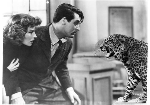 Leoparden küßt man nicht 1