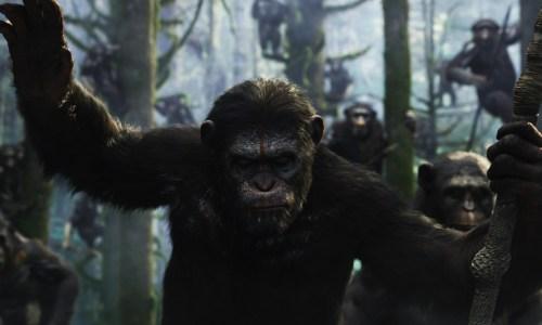 Planet der Affen Revolution 5