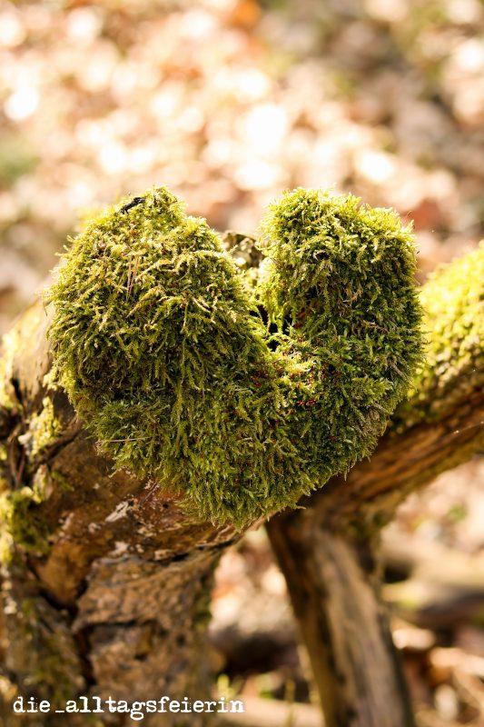 #diefreitagsfragerei, diefreitagsfragerei, Freitagsfrage, die alltagsfeierin, ü40, Natur, Wald, Moos, Herz aus Moos, Moosherz, hör auf dein Herz, was brauchst du, Seelensache, tudirgutes