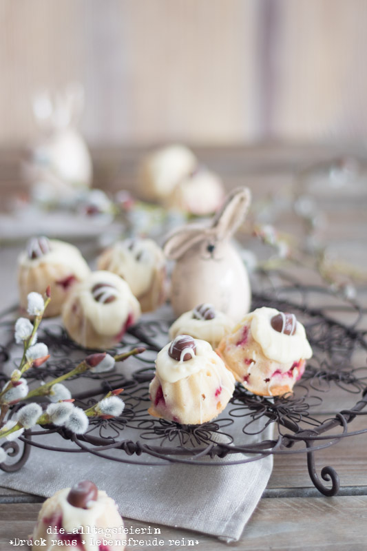 Minigugelhupf, Gugelhupf, Vanille, Himbeer, Himbeermarmelade, weiße Schokolade, backen, Backen für Ostern, Oster-Gugelhupf, Osterei, diealltagsfeierin.de, Osterleckerei, Osterbrunch, ü40 Blog,