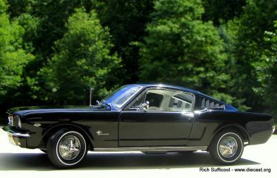 Mustang2+2 024