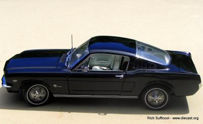 Mustang2+2 023