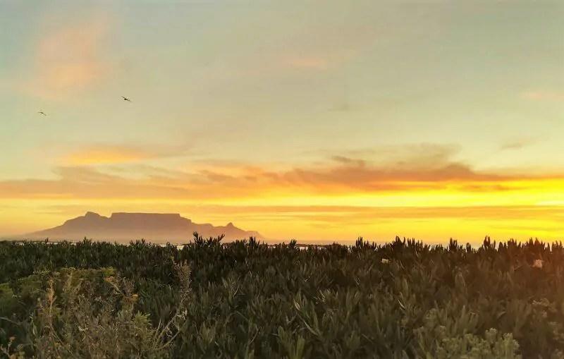 Tag 1 – Kapstadt – Unsere Reise beginnt