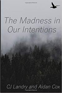 The Madness in Our Intentions - cover art.