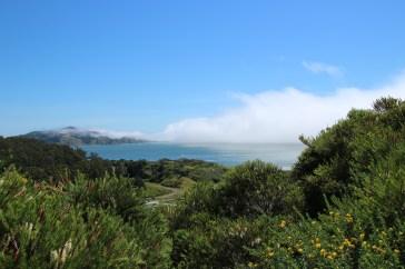 Der Nebel zieht in die Bucht