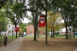 Harvard Beflaggung