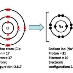 Bohr Rutherford Diagram For Beryllium Three Prong Switch Of Magnesium Oxide Making A Model ~ Elsavadorla