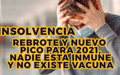 PREPARESE PARA LA SIGUIENTE PANDEMIA: LA INSOLVENCIA DE LA PERSONA NATURAL NO COMERCIANTE Ley 1564 de 2012 Código General del Proceso Título IV Se espera un PICO inminente en el 2021