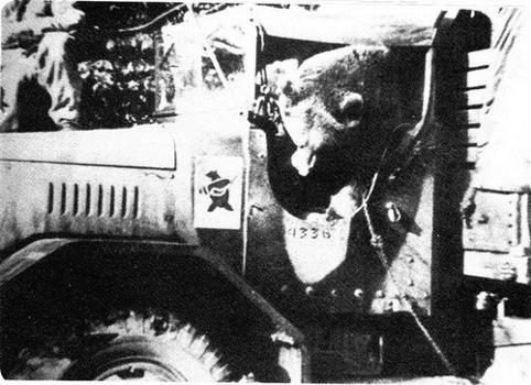 482px-Wojtek_in_truck