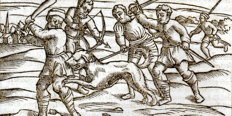 middle ages rabid dog