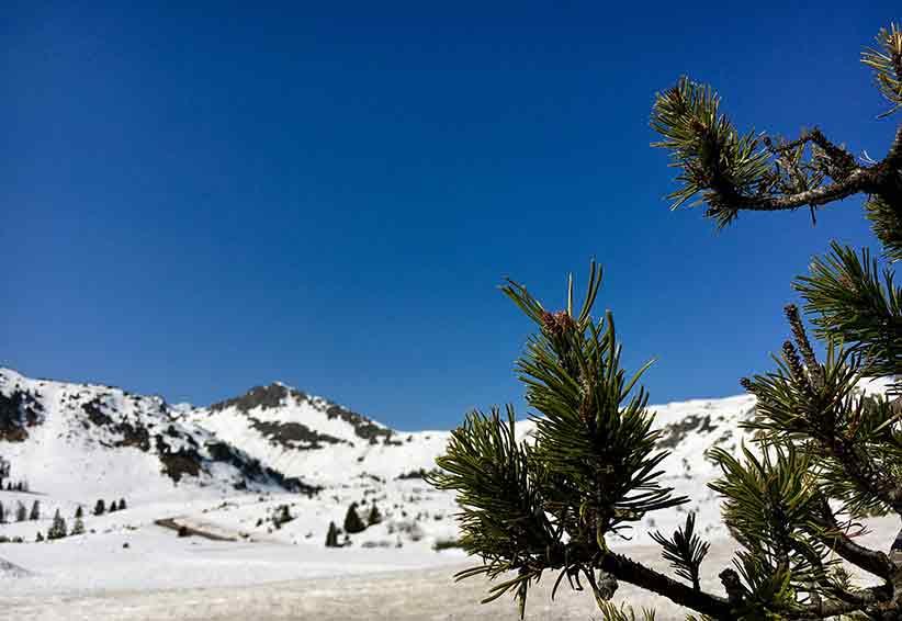 Obertauern im Frühjahr – Sonnenskilauf und Partytime