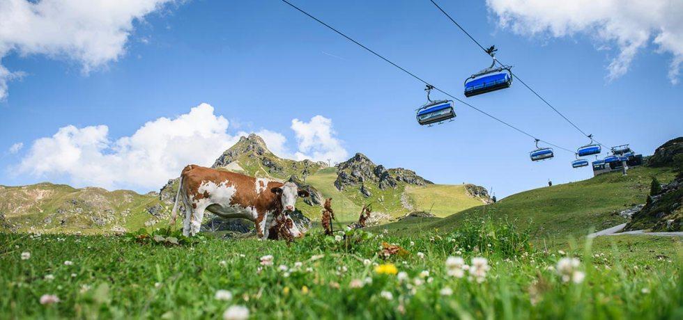 Den Bergsommer in Obertauern genießen. Österreichs schneereichster Wintersportort ist auch in der warmen Jahreszeit eine Besuch wert. Foto: TVB Obertauern