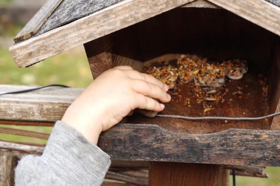 diy-vogelringe-die-kleine-botin-2016-3