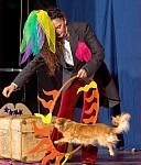 Ingrid Irrlicht, Zirkus Pantomimi