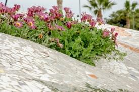 Foto von Blumen an der Strandpromenade