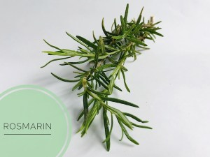 naturseife guenstig kaufen haarseife ausprobieren haarseife shop haarseife tesen biologisch palmoelfrei vegan zerowaste.JPG