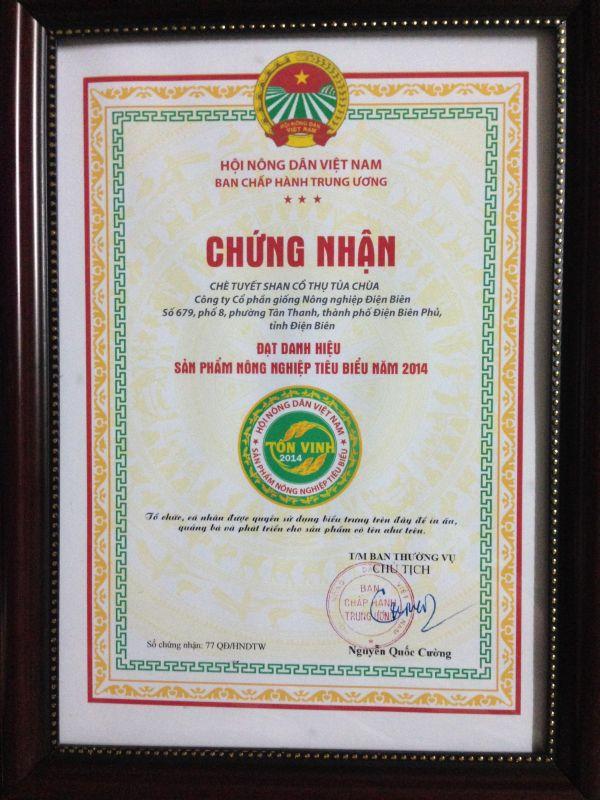 Chè Shan Tuyết Tủa Chùa