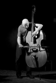 Tree Talk: Das Trio Phillips/Hollinetz/Schlimp, hier im Bild der Kontrabassist Barre Phillips. Bild Sam Harfouche