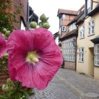 Abseits der Hipness-Hitparaden (Teil 3): Darum mal nach Lüneburg fahren