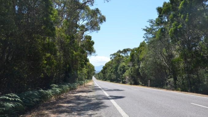 """Ein typisches Strassenbild in Tasmanien: total """"überfüllte"""" Strassen"""