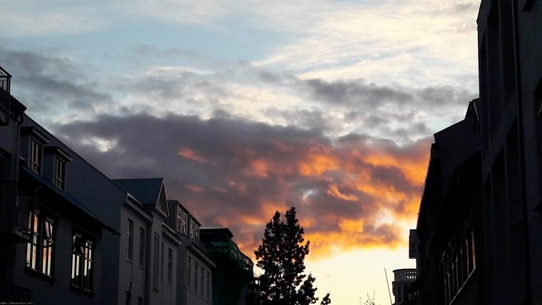 Reykjavik (17)