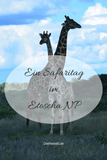 Pin Safaritag Etoscha NP