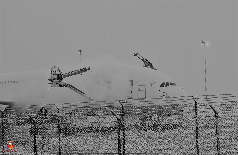 Flugzeuge-Flughafen (17)