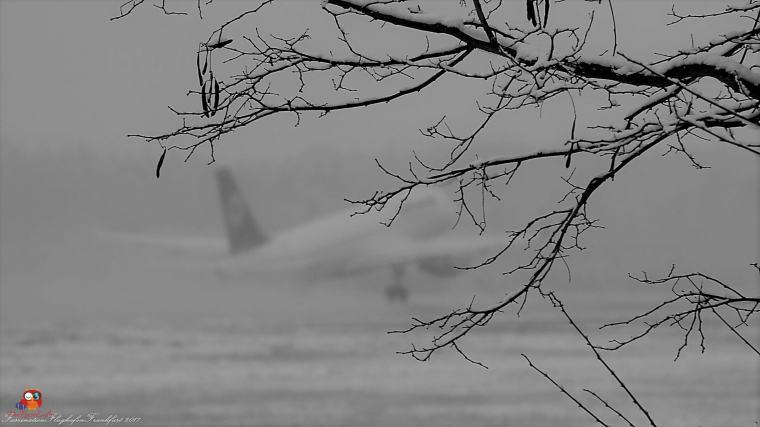 Flugzeuge-Flughafen (22)