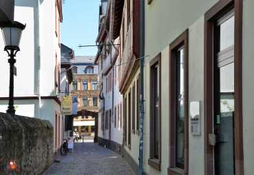 Kirschgarten (4a)GIMP-min