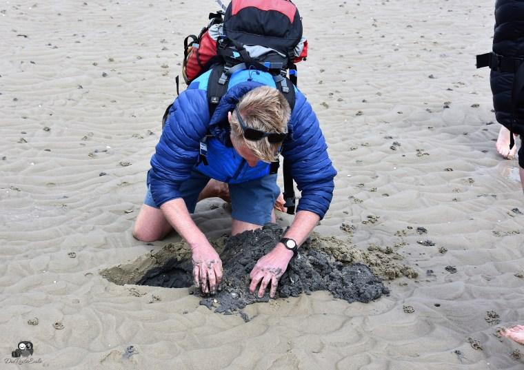 Dark Blome gräbt einen Wattwurm aus