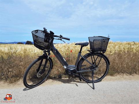 E-Bike Winora i9 (1aa)