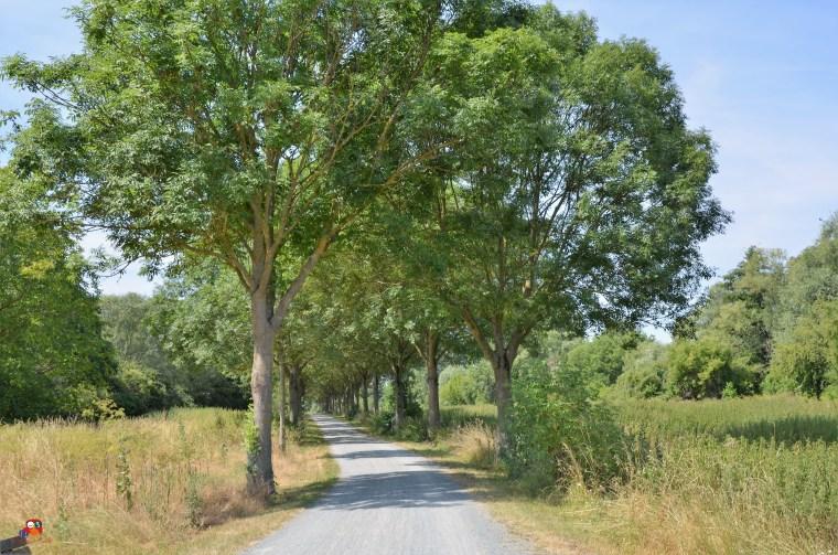 Regionalpark Raunheim + Streetart (63)
