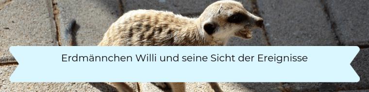 Erdmännchen Willi und seine Sicht der Ereignisse