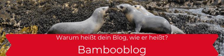 Bambooblog