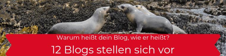 12 Blogs stellen sich vor