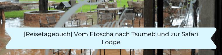 Reisetagebuch 11 Vom Etoscha nach Tsumeb und zur Safari Lodge