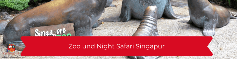 Zoo und Night Safari Singapur