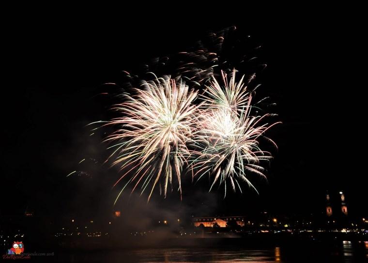 Feuerwerk über dem Mainzer Dom