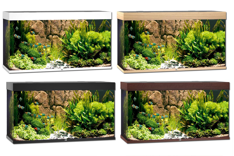 Juwel Rio 300 Aquariumrencompleet