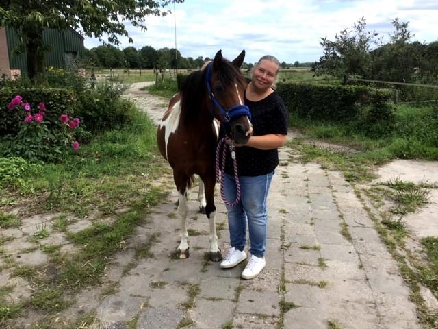 Paard met diverse klachten: jeuk, head- shaking, hoesten, huidklachten, niet rad, schrikkerig…