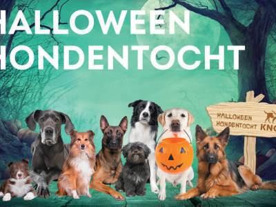 KNGF Halloween Hondentocht