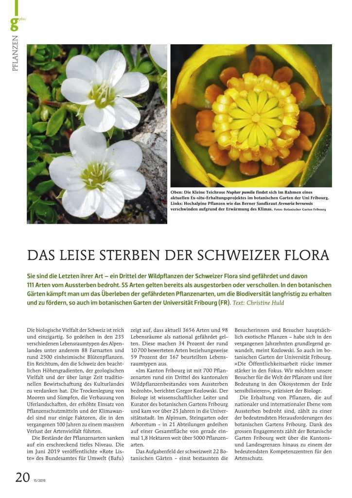 Das leise Sterben der Schweizer Flora 1